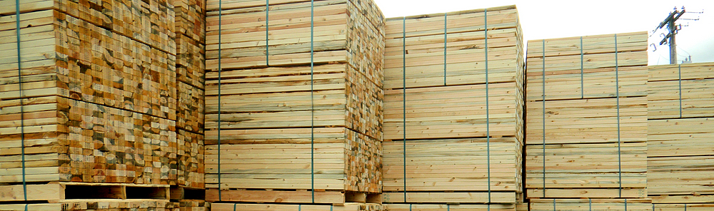 Small Business Specials on New Economy Pallets - SoCal Pallet